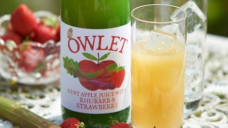 Owlet fruit juice bottles