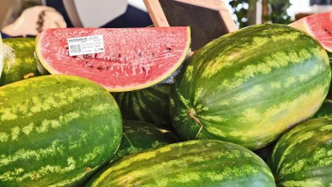Watermelon with DT linerless label